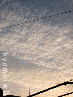 夕日が映る雲。